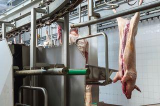 Pork Processing Plant